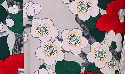 白い梅の柄 春の着物