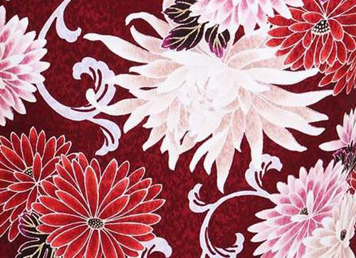 冬の着物柄 菊